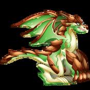 Bark Dragon 3
