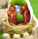 File:Waterfall Dragon Egg.png