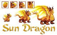 Sun dragon evo