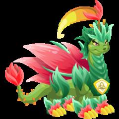 Dragon Natura Puro