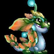 Sap Dragon 1