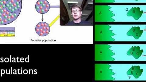 Genetic Drift-0