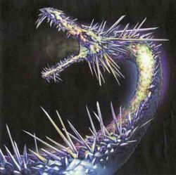 Crystal Dragon - Ciruelo Cabral