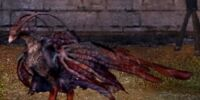 Predatory Ashwind Dragon