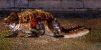 Intrepid Umberhusk Dragon