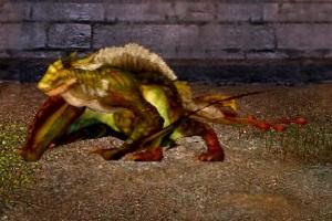 File:Cinyorin Wolfwing Dragon.jpg
