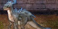 Wandering Snowneck Dragon