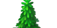 Massive Fir Tree