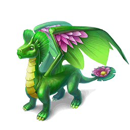 File:WaterLilyDragonStore.png