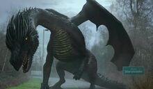 European dragon 2