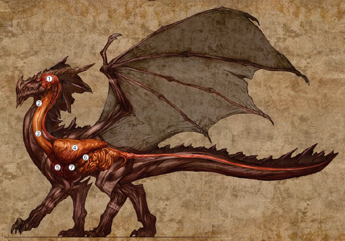Dragon Organs