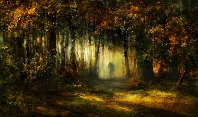 File:Forest never sleeps by zalas.jpg