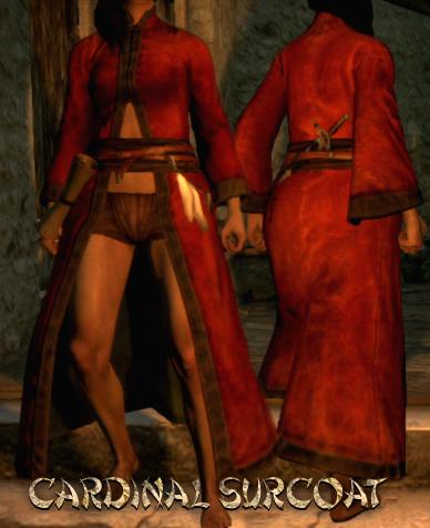 File:Armour Torso Cardinal Surcoat.png