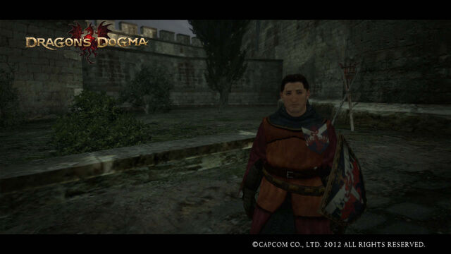File:Dragon's Dogma Screenshot of Ser Maximilian .jpg