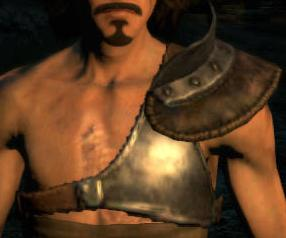 File:Chestguard.JPG
