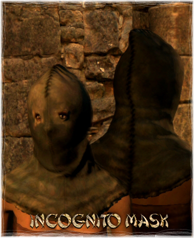 File:Armour Head Incognito Mask.png