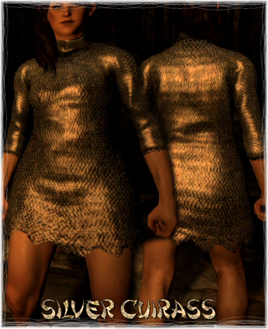 File:Armour Torso Silver Cuirass.png