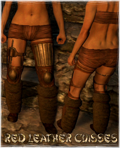 File:Armour Legs Red Leather Cuisses.png