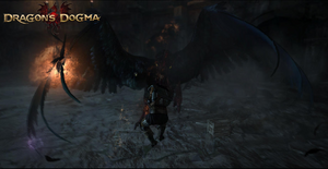 Dragon's Dogma Screenshot 4