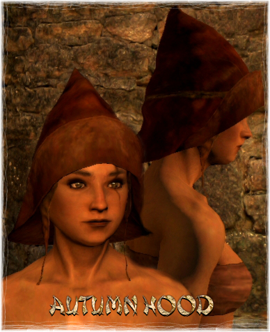 File:Armour Head Autumn Hood.png