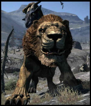Dragon's Dogma Dark Arisen Screenshot 075
