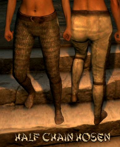 File:Armour Legs Half Chain Hosen.png