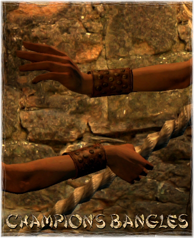 File:Armour Arms Champion's Bangles.png