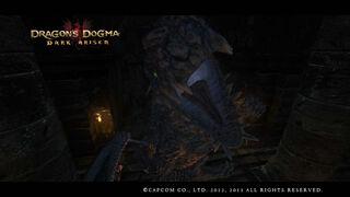 Dragon's Dogma Dark Arisen Screenshot 13-0