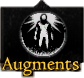 Augments Skill Icon.png