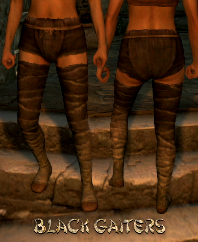 File:Armour Legs Black Gaiters.png