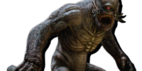 Gorecyclops