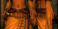 Recluse's Robe