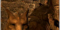 Lupine Veil
