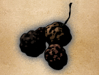 File:ROTTEN BERRY.png