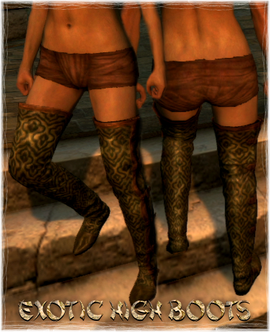 File:Armour Legs Exotic High Boots.png
