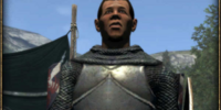 Ser Robert