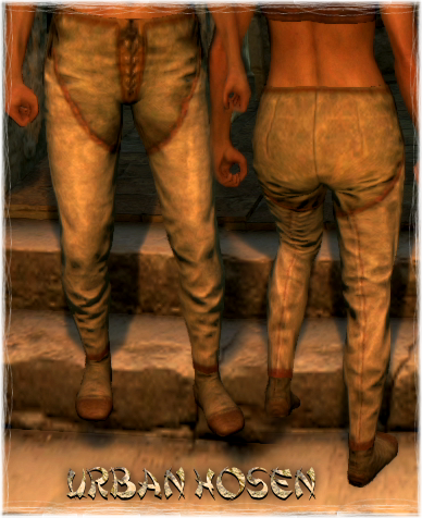 File:Armour Legs Urban Hosen.png