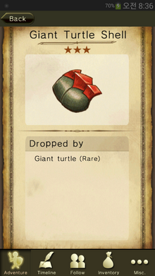 Giant Turtle Shell