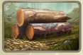 Resource lumber