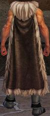Lvl 60 MorningStar cloak