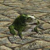 Companion Frog