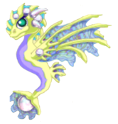Pearl Dragon Adult