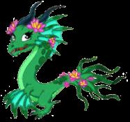 Lotus Dragon Adult