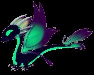 Shadow Dragon Adult