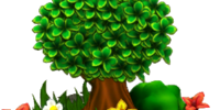 Plant Habitat