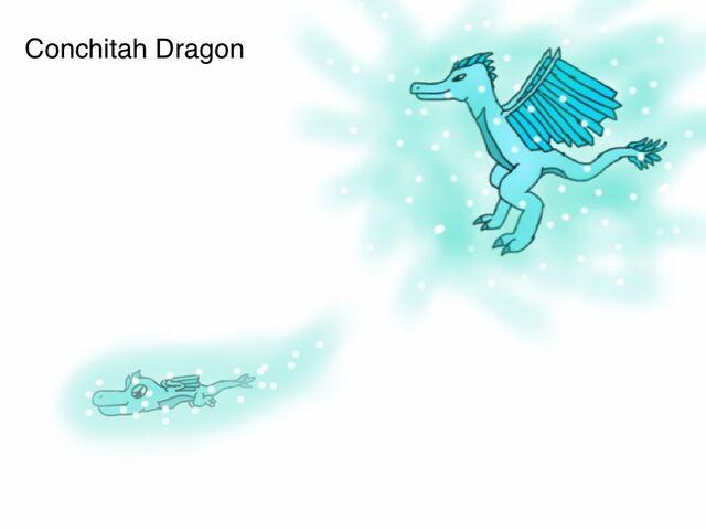 File:Conchitah Dragon.jpg