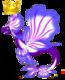 OrchidDragonAdultCrown