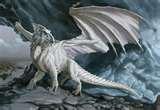 File:White European Dragon.jpg