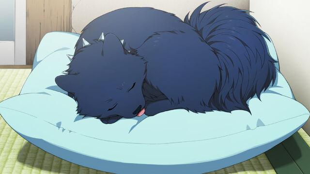 File:Ren sleeping .jpg