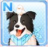 Dog & Chick White